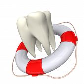 Lifebelt And Tooth