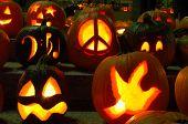 Carved Lighted Pumpkins