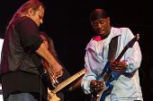 Walter Trout, Bernard Allison And Rick Knapp