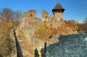 stock photo of zakarpattia  - Nevitsky Castle ruins Kamyanitsa village 12 km north of Uzhgorod Zakarpattia Oblast Ukraine Built in 13th century - JPG
