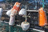 stock photo of lobster trap  - Weathered buoys and traditional lobster traps on the wharf - JPG