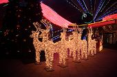 stock photo of christmas lights  - Figures of shone deer with sledge on dark - JPG