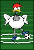 Soccer Rooster