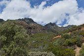 Chapman's Peak Drive. View to mountain rocks.