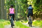 stock photo of biker  - Bikers in forest cycling on track from behind - JPG