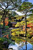 Ginkaku-ji Temple in Kyoto, Japan during the fall season. nov 19