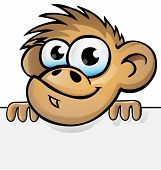 Monkey Cartoon With Background