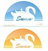 Swan Project