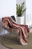 picture of sansevieria  - Plaid draped over a modern metal chair - JPG