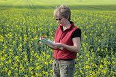 Agronomy, Oilseed