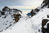 stock photo of kilimanjaro  - Summit of the Kilimanjaro mountain at early morning time Tanzania