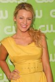 Blake Lively at the CW Summer 2007 TCA Press Tour. Pacific Design Center, Los Angeles, CA. 07-20-07
