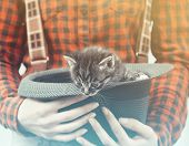 Woman Holds Hat With Kitten