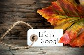 Autumn Label With Life Is Good