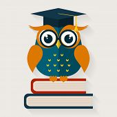 foto of owls  - Back to school - JPG