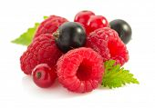raspberry and  currants isolated on white background