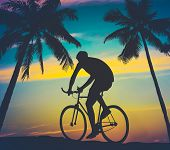 Retro Style Palms And Cyclist