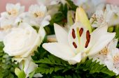 foto of crematory  - White flowers as roses and lily for the funeral - JPG