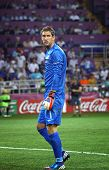 Goalkeeper Maarten Stekelenburg Of Netherlands