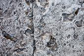 image of mortar-joint  - Concrete surface with rich and various texture - JPG
