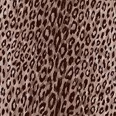 Leopard Skin Pattern