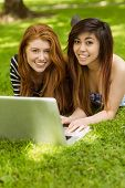 Happy relaxed young women using laptop in the park