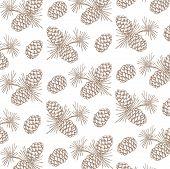 nut pine