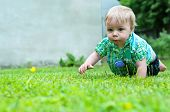 picture of crawling  - Cute baby boy crawling in the grass near house - JPG