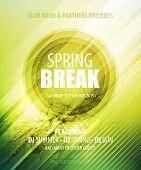 pic of spring break  - Spring Break Party - JPG