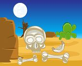pic of skull bones  - The Human bones and skull in desert - JPG