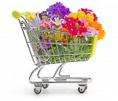 image of wildflowers  - shopping cart full of wildflowers isolated on white - JPG