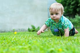 picture of crawl  - Cute baby boy crawling in the grass near house - JPG