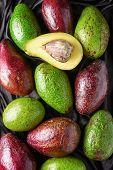 Постер, плакат: Colorful Fresh Ripe Avocado Varieties Green And Red Fruits