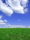 Blue Sky And Meadow Background.