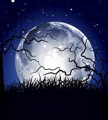 picture of full_moon  - vector night background with the moon and silhouettes of trees - JPG
