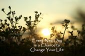 Inspirational Quote- Every New Day Is A Chance To Change Your Life. With Grass Flowers Silhouette An poster