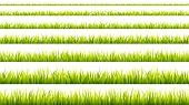 Grass Banner. Cereal Sprouts. Springtime Growth Greenery. Green Turf Overlay Stripes. poster