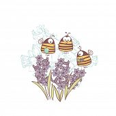 bees and hyacinth