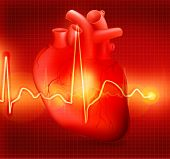 Heart cardiogram, bitmap copy