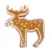 stock photo of cariboo  - Gingerbread reindeer over white background - JPG