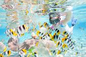 stock photo of butterfly fish  - Woman snorkeling in clear tropical waters among colorful fish - JPG