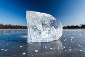 Freezing winter temperatures: block of ice lying on the surface of a frozen pond on a sunny winter d
