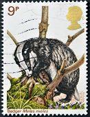UNITED KINGDOM - CIRCA 2000: A stamp printed in Great Britain shows badger meles circa 2000