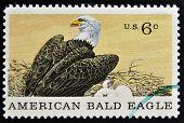 UNITED STATES OF AMERICA - CIRCA 1969: A Stamp printed in USA shows american blad eagle circa 1969