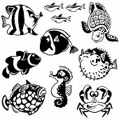 Cartoon Fishes Black And White