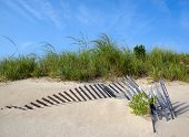 Sand dune with fence and grass