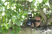 Closeup of a paparazzi photographer hiding behind tree