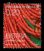 CROATIA - CIRCA 2008: stamp printed by Croatia dedicated to Bistra, a series of Croatian Ethnographi