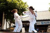 Nisei Week Martial Arts Demo