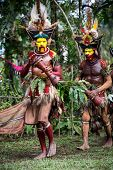 PAPUA, NEW GUINEA - OCTOBER 30: The men of the Huli tribe in Tari area of Papua New Guinea in tradit